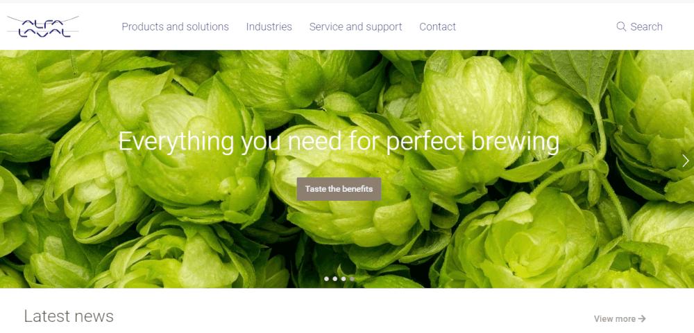 modern website example - weblium
