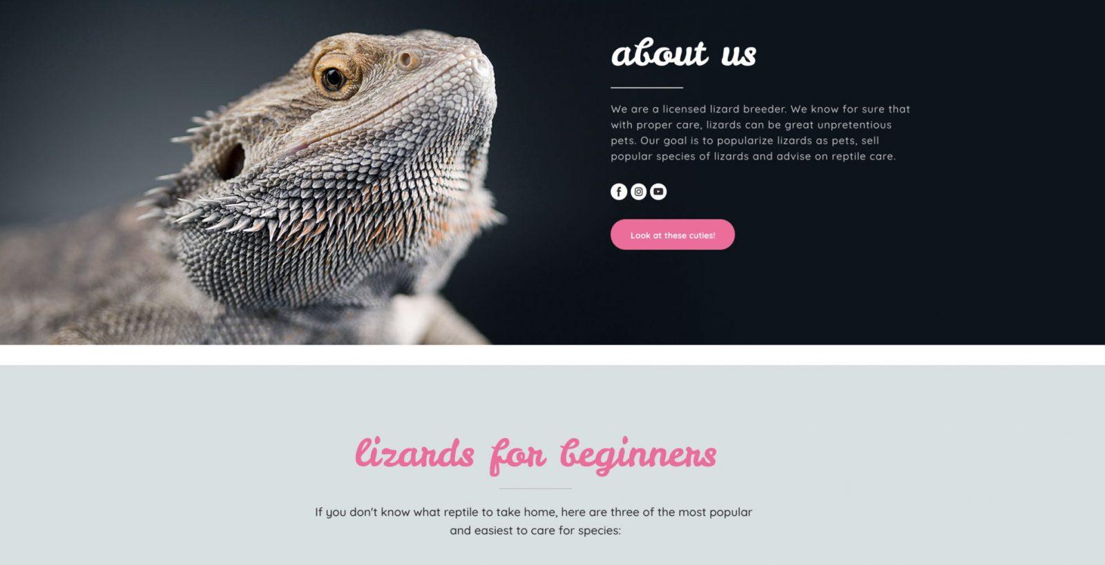 Lizard shop