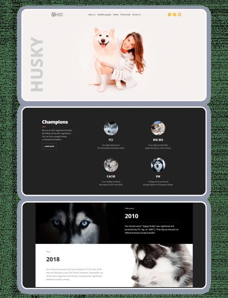 good web design example