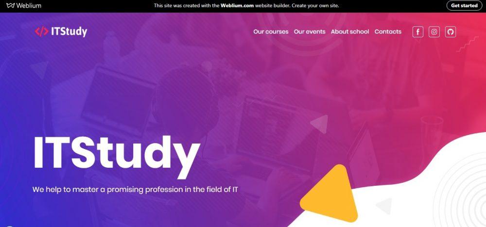 IT Study (free Weblium template) - weblium
