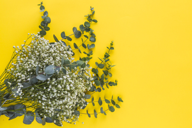 Yellow Background: 10 Website Examples