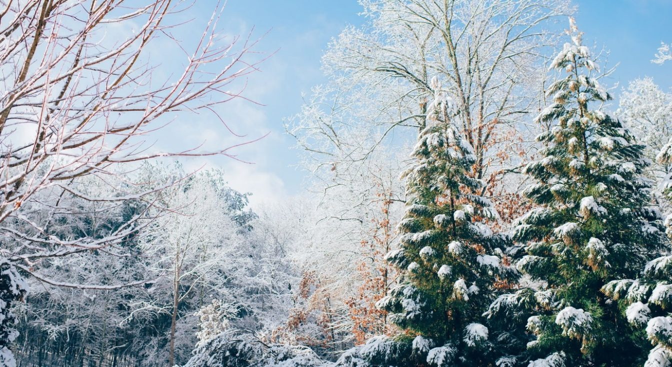 10 Great Winter Backgrounds  for the Website