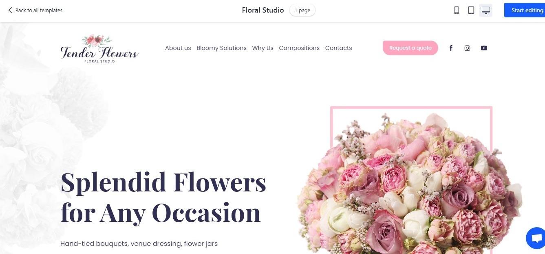 white background website