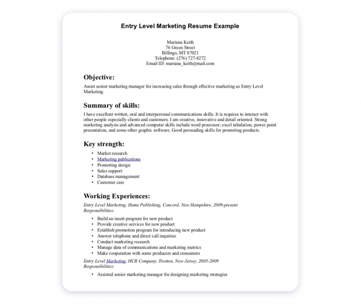 Effective Marketing Portfolio Entry Level Marketing Resume